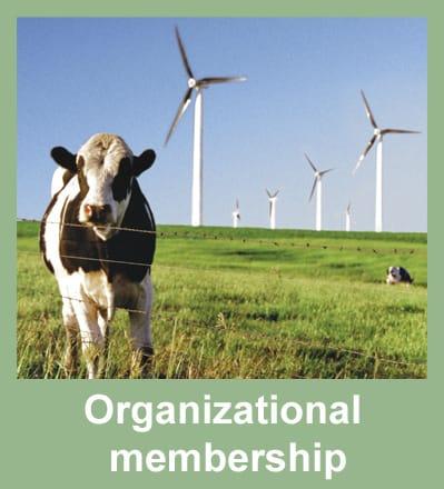 Organizational_membership_edited-1