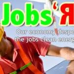 The Energy Activist - Summer 2011